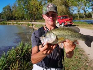 Largemouth Bass — Florian Boutte