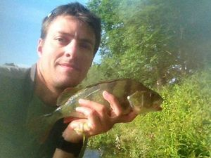 European Perch — Carna Sam