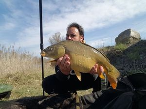 Mirror Carp — Jerome De Carpe Silure