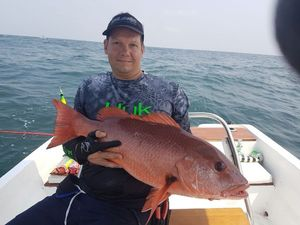 African Red Snapper — Guillaume  Delpuech