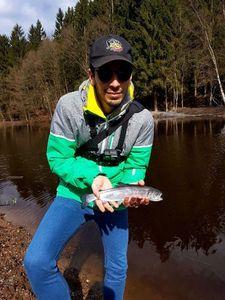 Brown Trout — Cédric Fishtique