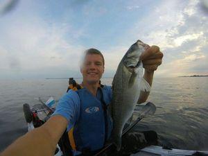 European Bass — Maxime Gueguen