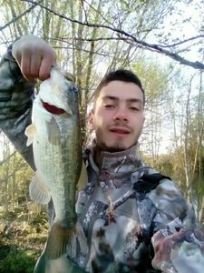 Largemouth Bass — Clément Nyzam