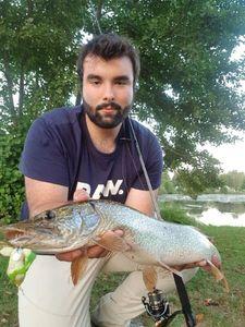 Northern Pike — Antoine Leroux
