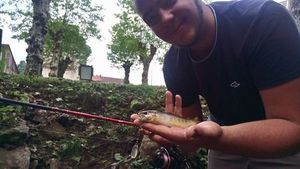 Brown Trout — Guillaume Dumesnil