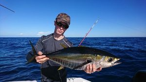 Yellowfin Tuna — Thibault Noesser