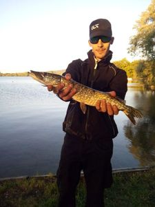 Northern Pike — Victor Vermand
