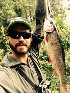 Rainbow Trout — Guillaume Gnd