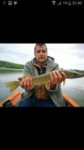 Northern Pike — Yohann Monnot