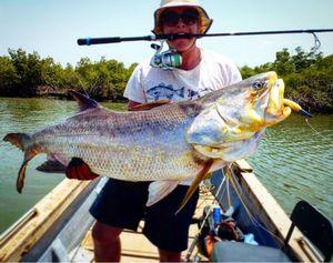 Giant African Threadfin — Jules Hache