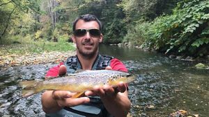 Brown Trout — Stephane  Thorens