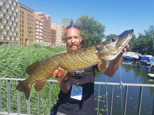 Northern Pike — christophe pirotte