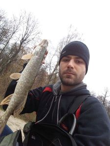 Northern Pike — Vincent Ragondet