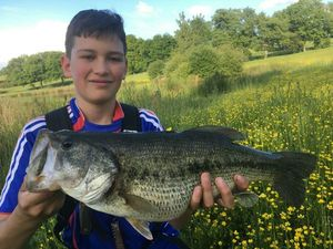 Largemouth Bass — Clement & Enzo