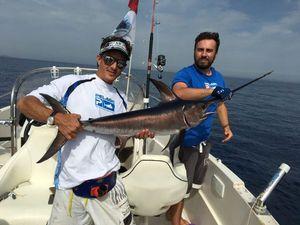 Swordfish — Damien Zissman