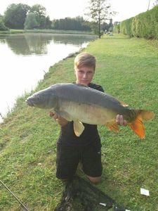 Mirror Carp — ALSA FISHING