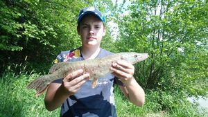 Northern Pike — Maxime Cherrier