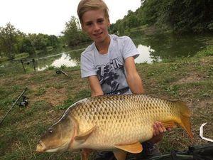 Common Carp — Luca Staal