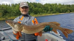 Northern Pike — Joël  RECOULES
