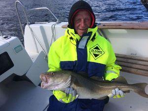 Atlantic Cod — Danny Morgan