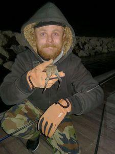 Common Cuttlefish — Guillaume Mergan