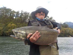 Coho Salmon — Jean Barbotin