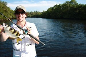 Banded Archerfish — Nicolas Xmylife Rodmaps