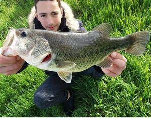 Largemouth Bass — Dylan fishing