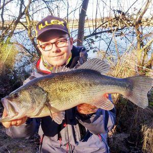 Largemouth Bass — Enzo Jono