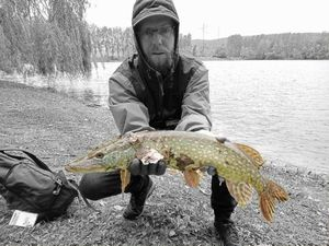 Northern Pike — Earl Hickey