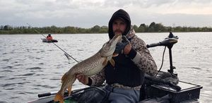 Northern Pike — Anthony Osr Aiie