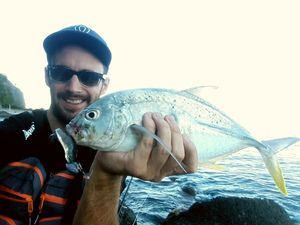 Brassy Trevally — Mathias Larrieu