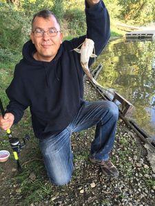 Flathead Catfish — Frederic Grosjean