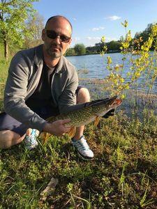 Northern Pike — Steph Allain