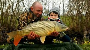Common Carp — Guillaume Plouchard