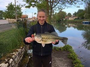 Largemouth Bass — Lucien Franckowiak