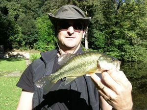 Largemouth Bass — Alain Fontaine