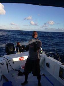 Great Barracuda — Elmondo Fishing