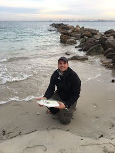Kahawai (Australian Salmon) — Adrien Gacon