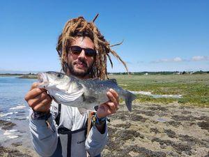 European Bass — Nicolas Xenidis