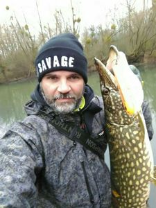 Northern Pike — Christophe LEPROUT