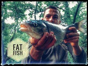 Chevesne — Douving Fishing