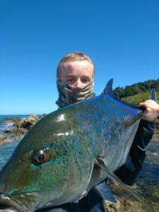 Blue Spotted Trevally — Thibault Noesser
