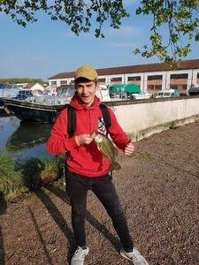 Largemouth Bass — Maxime  Pignard