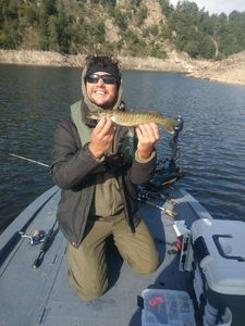 Northern Pike — Manu Roux