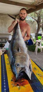 Bluefin Tuna — Charles BELLAGAMBA