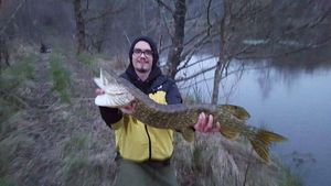 Northern Pike — Quentin Colas