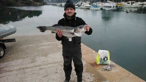 European Bass — Stef Gogo