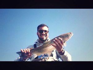 Atlantic Salmon (Landlocked) — David Zehla