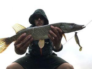 Northern Pike — Jordan Monkey Fishing